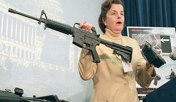 Essay Gun Control