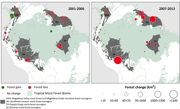 Distribution of gold mining sites with significant change in forest cover (km2) in periods 2001–2006 and 2007–2013. Green dots represent an increase in forest cover, red dots represent a decrease in forest cover, and gray areas indicate no significant change in cover.