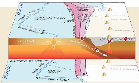 Cascadia The West Coast Fault Line That Is Nine Months Pregnant - West coast fault lines