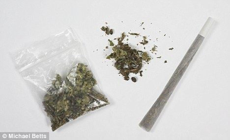 Paraphernalia: School officials suspected the seventh-grade boy of having marijuana, according to the lawsuit
